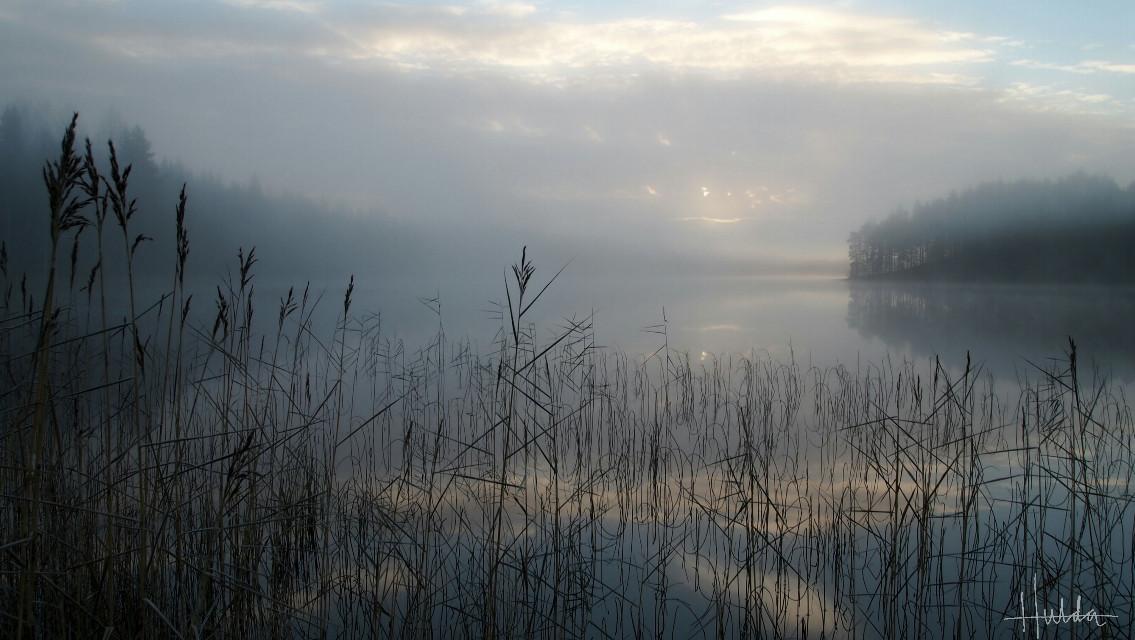 #landscape #Lakeview #fog #Sweden #noedit