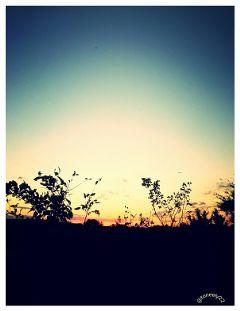 sunset silhouette fall sky
