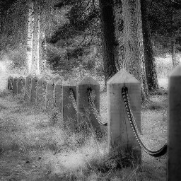 chain fence monochrome blackandwhite