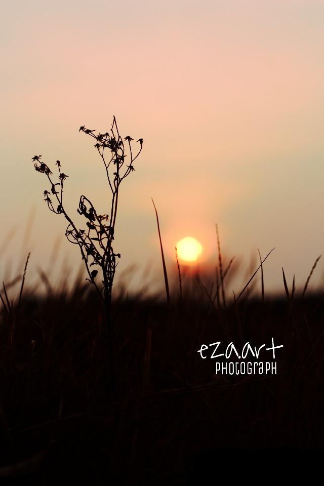 Sunset.  #sunset