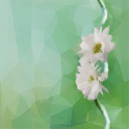 polygon polygoneffect flower madewithpicsart