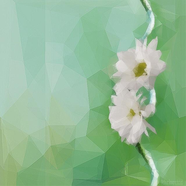 #polygon #polygoneffect #flower #madewithpicsart