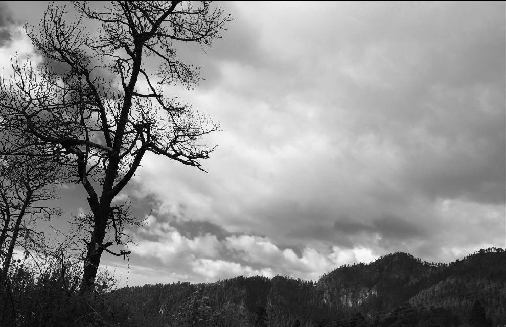 #roadtrip#landscape#free#morelos
