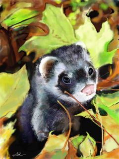 wdpautumn digitaldrawing drawing art cute ferret