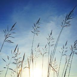 nature photography sky sun
