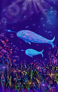 wdpnarwhal drawing art narwhal sea