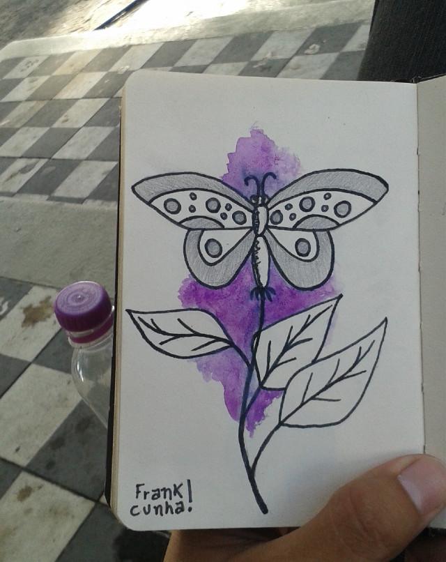 Sketch book . Borboleta