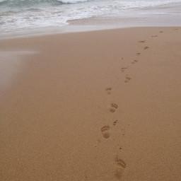 beach footprints sand ocean