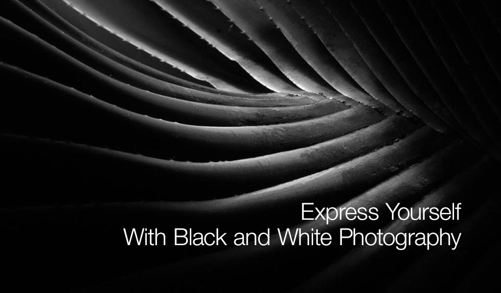 tips o black and white photography