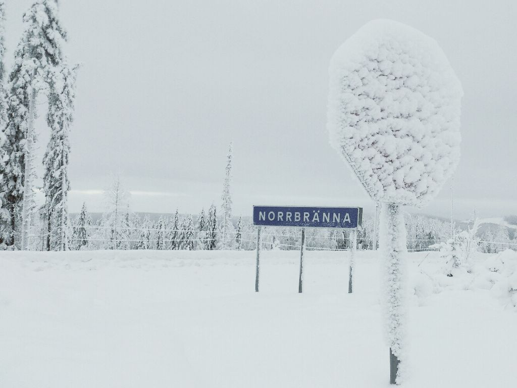 Sometimes it is a little hard to read the road signs in this country... #white #winter