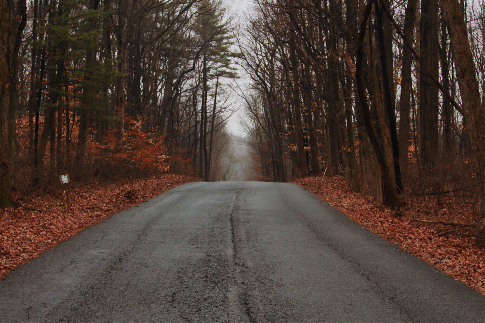 Road to victory .. #landscape  #barronphotography