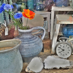 colorcontrast blue orange flowers shopping