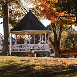 rays stillness autumn fall park
