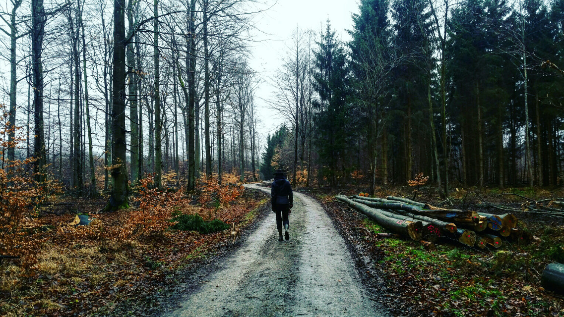 Rainy, on tour again  #rain #travel #winter #nature # Sunday
