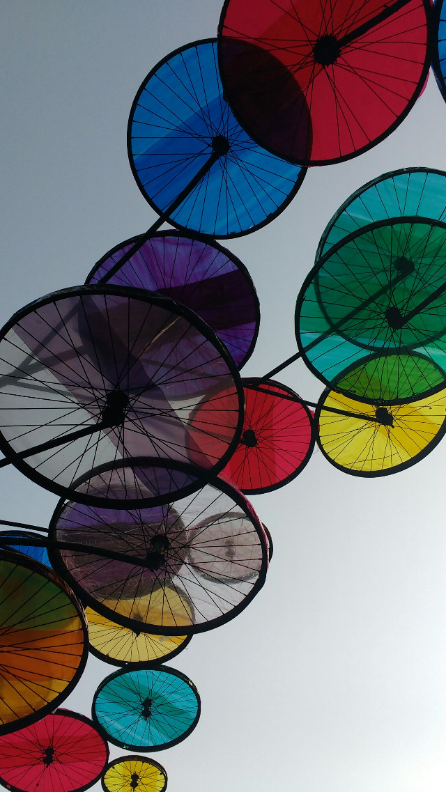 Cycle tyre in Colourful palette arranged in canopy
