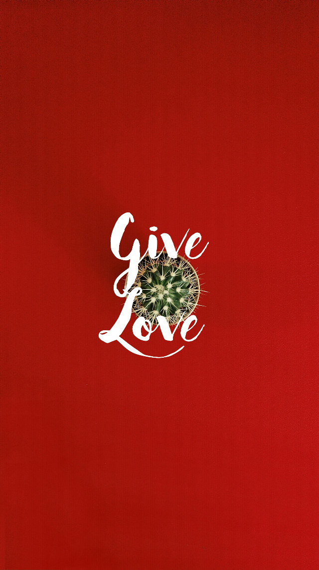 Give Love  #colorful #freetoedit #flower #photography #quotesandsayings #typography #words #people