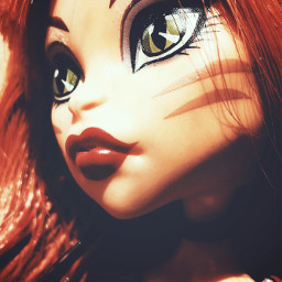 monsterhigh doll cat emotions colorful