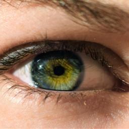 eye greeneye blueeye freetoedit