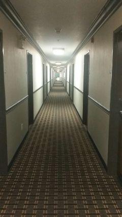 freetoedit hallway hotels