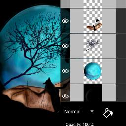 moon twilight bat