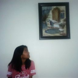 blogger framedpictures