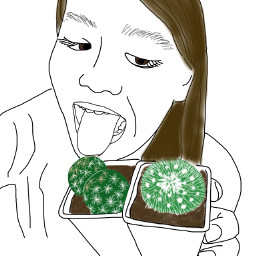 art interesting japan outline cactus freetoedit