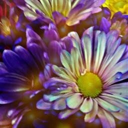 flowerbouquet acmemarket wednesdayevening oilpainteffect