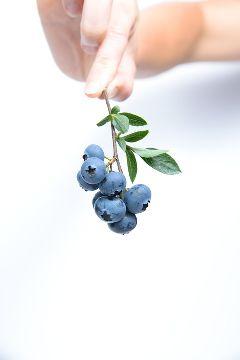 freetoedit human hand fruit healthy